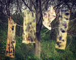 Eco-Printing Scarves